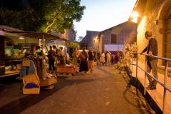 Nuit du Folk Dioise 2017 - ╕Sophie Dartigeas - 007