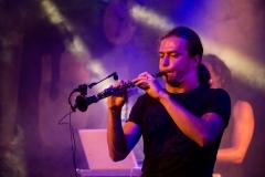 Nuit du Folk Dioise 2017 - ╕Sophie Dartigeas - 140